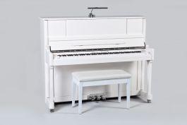 Sebastian Steinwald 123 (Korg KS-30) PWH zilver silent piano
