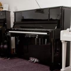 Sebastian Steinwald 123 (AdSilent) PE zilver silent piano