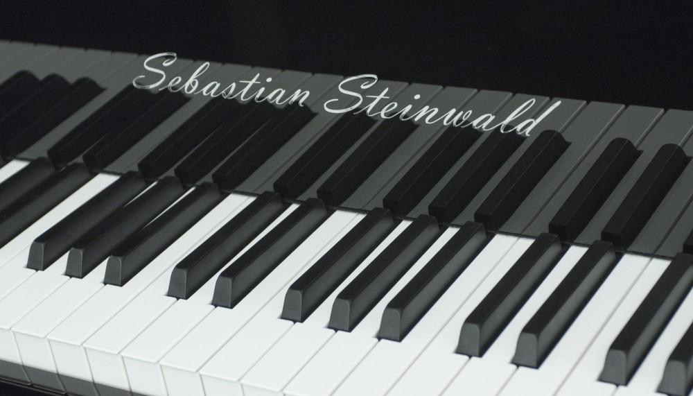 Sebastian Steinwald GP-186 Special Edition PE zilver vleugel
